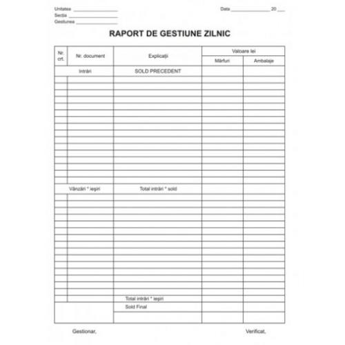 Raport gestiune zilnica